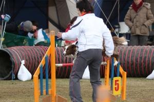 2015hukuyamama 158711_R