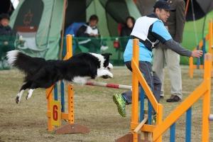 2015hukuyamama 155911_R
