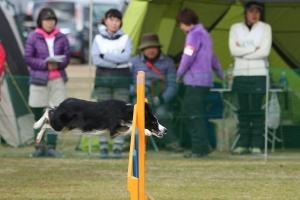 2015hukuyamama 163711_R