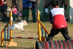 2015hukuyamama 64911_R