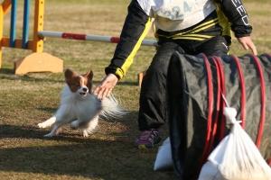 2015hukuyamama 30711_R