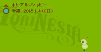 torinesia20150106-5.png