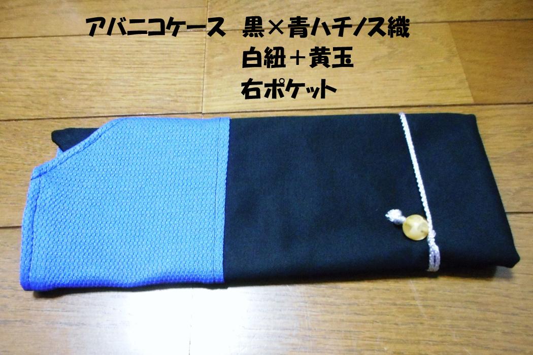 アバニコケース黒×青1