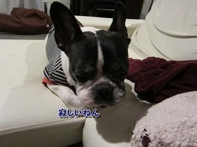 寂しい (4)