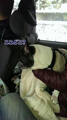 ドライブ (2)