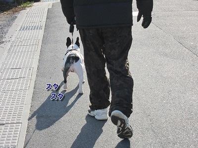 お散歩 (1)