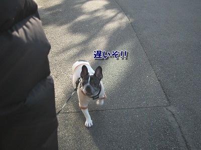 お散歩 (2)