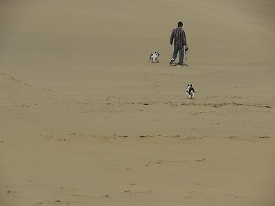 砂丘 (4)