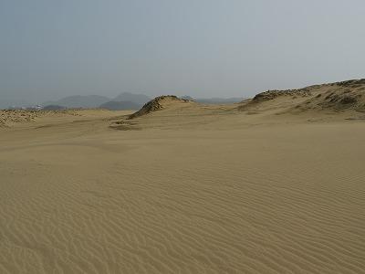 砂丘 (7)