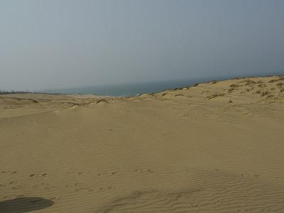 砂丘 (8)