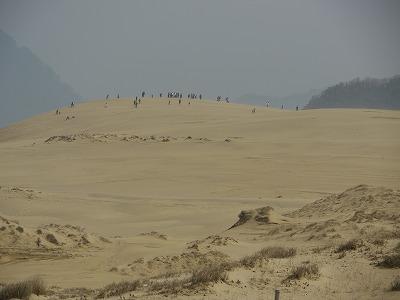 砂丘 (6)