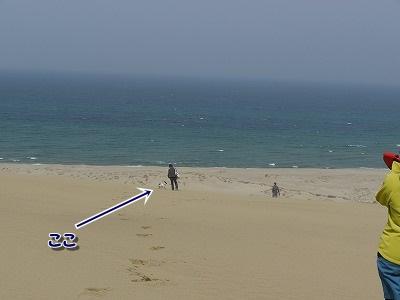砂丘 (2)