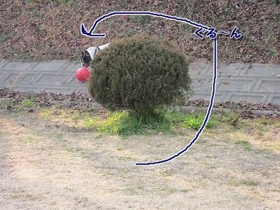 ボール (4)