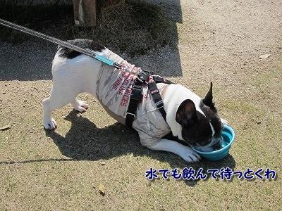 お出かけ (3)