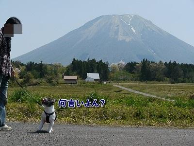 大山 (3)