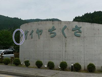 千種 (5)