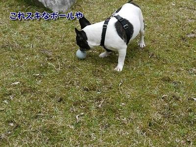 あぶない (3)