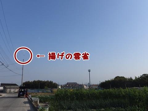 05021502.jpg