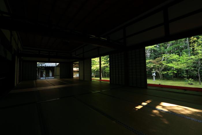 DPP_0305.jpg