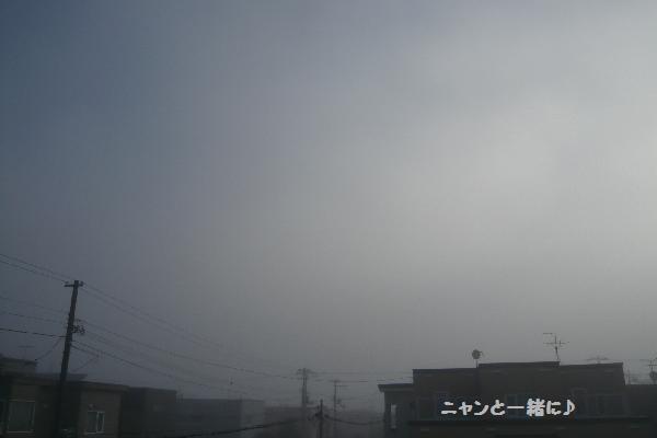 朝靄071015