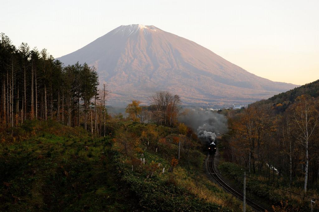 函館本線 C11207 北四線・小沢寄り伐採地小俯瞰