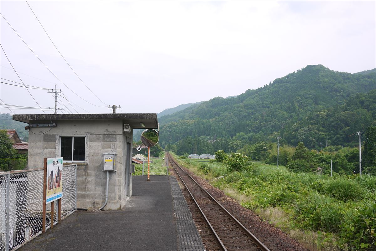 P1390026_R.jpg