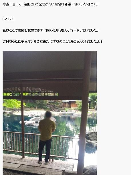 翻訳スクリーンショット