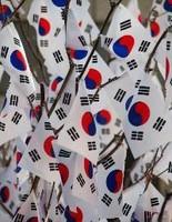 安倍内閣、閣議決定の答弁書からも「韓国と価値共有」の表現を避ける・・韓国ネットは「どうしてこんなことに?」「いつか3倍返しする」