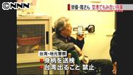 """""""台湾の空港で暴行""""俳優・隆大介さん拘束 日テレはさん付け"""