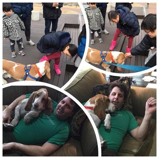 韓国でテロに遭ったマーク・リッパート駐韓米国大使は、大変な愛犬家。大使は犬を飼ってるのに犬肉を差し入れかよw