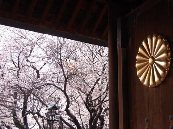 桜花のごとく散った日本兵は、満開の桜がある靖国神社に英霊として祀られています。