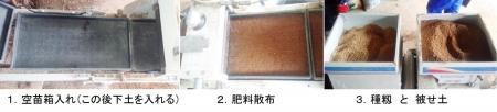 農15_4_11 1稲種蒔