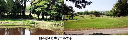 農15_5_1 隣はゴルフ場