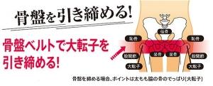 daitenshi-top2.jpg