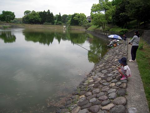 鯉釣り01