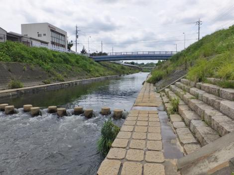 恩廻橋付近の鶴見川