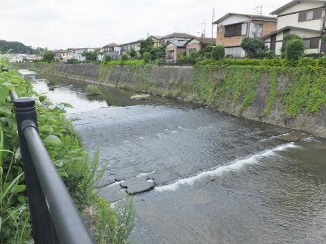 鶴見川・子の神橋上流