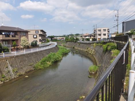鶴見川・岡上橋下流
