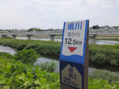 今田越流堤橋付近の標柱