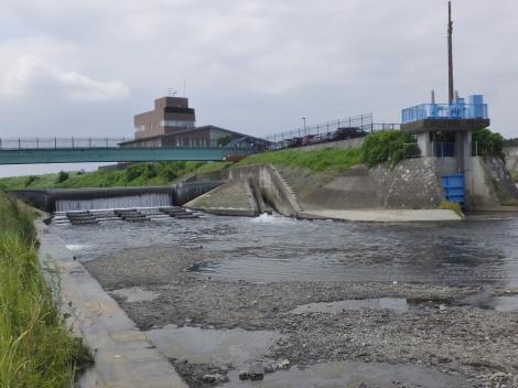 下飯田遊水地排水ゲートと俣野堰