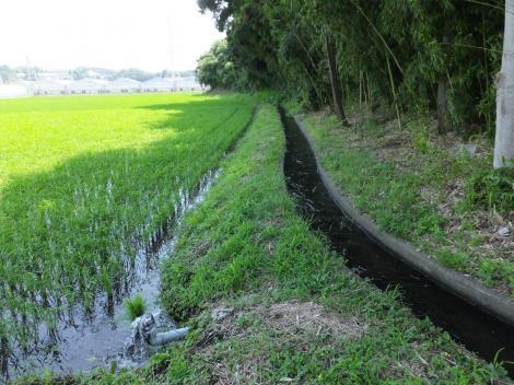 俣野堰用水路・西俣野大塚