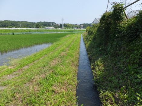 俣野堰用水路・西俣野
