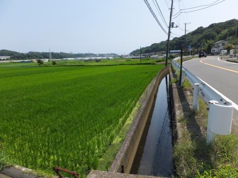 俣野堰用水路・御岳神社付近