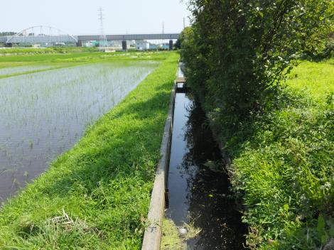 俣野堰用水路・西俣野窪河内