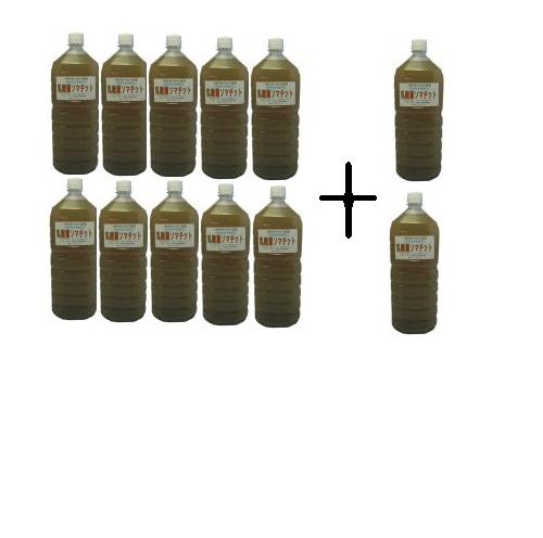 乳酸菌ソマチット10本で2本おまけがついてくる