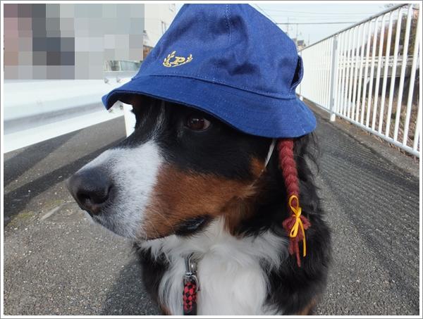 26-12帽子のモデル1
