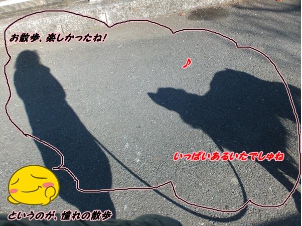 2015-1妄想中