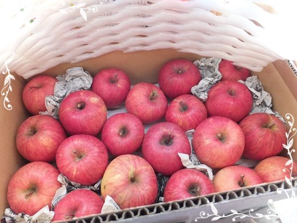 2015-1きららふぁーむのリンゴ