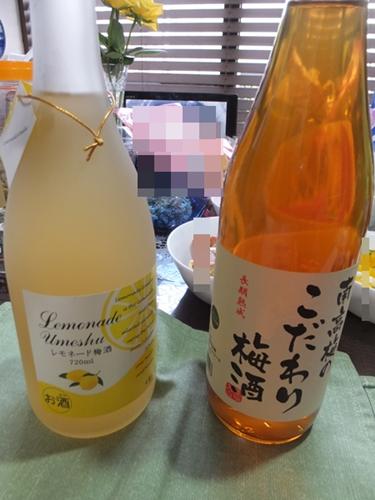 2015-4梅酒