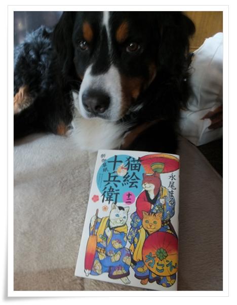 2015-4コミック猫絵十兵衛